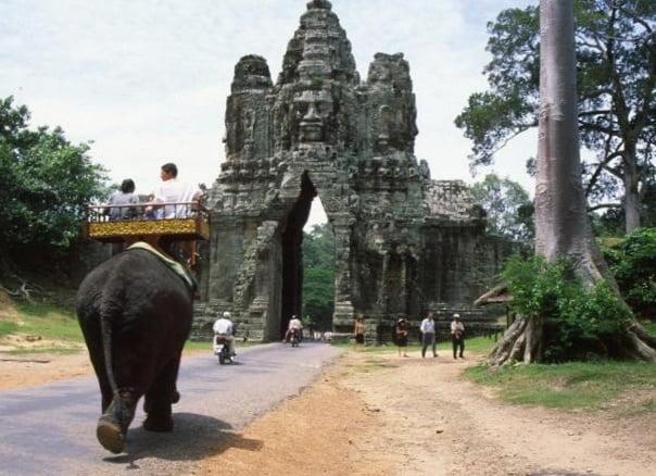 Puerta y elefante