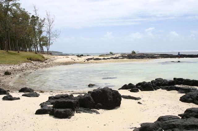 Rocas negras y arena orgánica