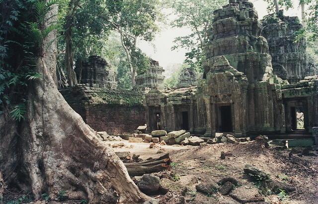 Ta Prohm, Jungle Temple