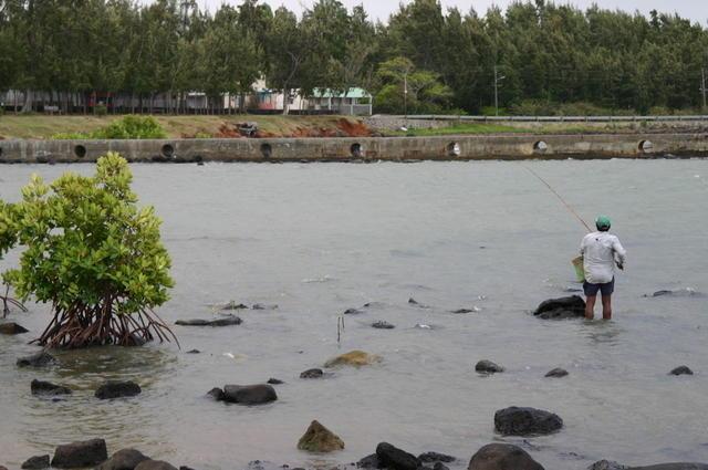 Pescando en el manglar